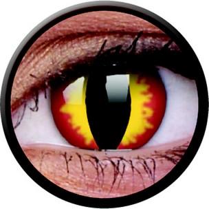 Dragon Eyes (Annuelles) (2 lentilles)