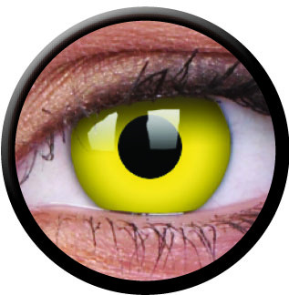 Yellow (Annuelles) (2 lentilles)