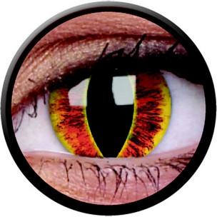 Saurons Eye (Annuelles) (2 lentilles)