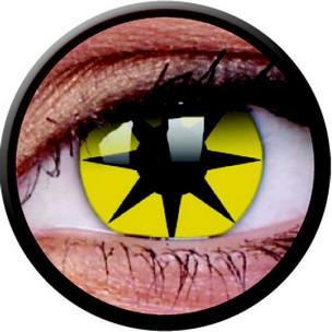 Yellow Star (Annuelles) (2 lentilles)